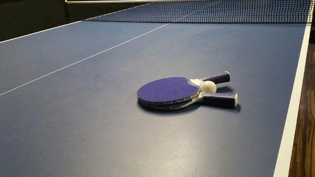 女子卓球シングルス 石川佳純の結果