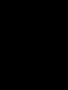 デブ猫(L)のイラスト(直立)